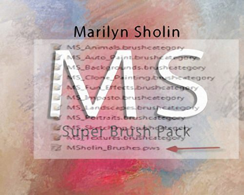 MS Super Brush Pack 2017-2018